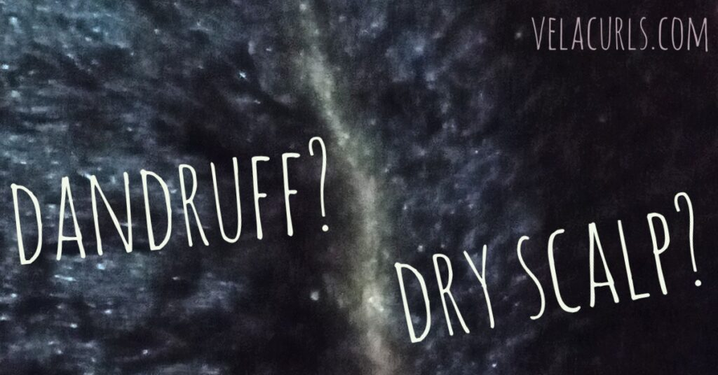 Difference between dandruff and dry scalp velacurls
